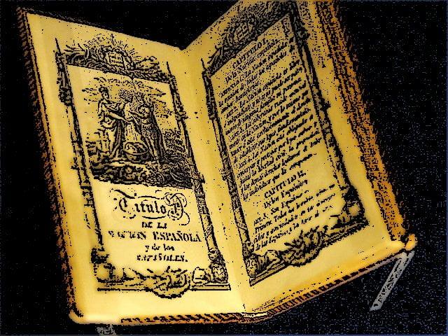 Constitución código