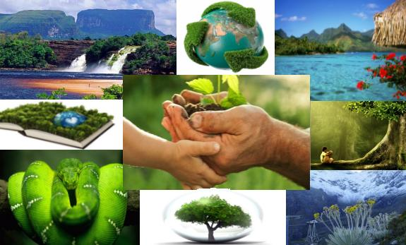 Ecología Ciencias Naturales