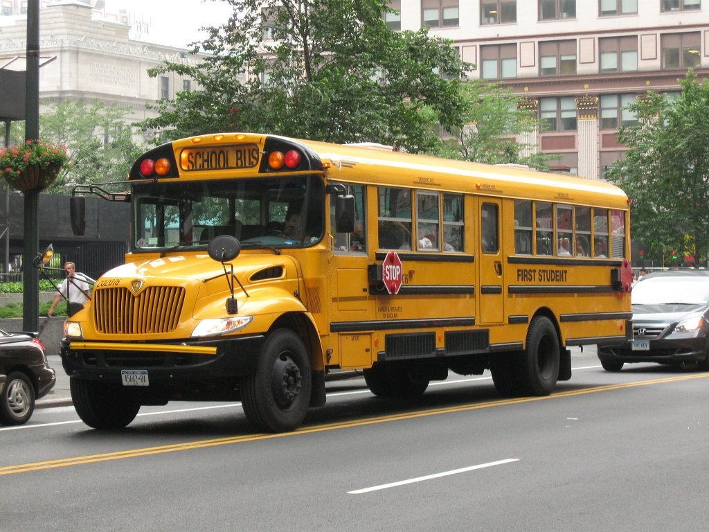 Bus informatica
