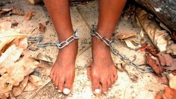 Tráfico de Esclavos