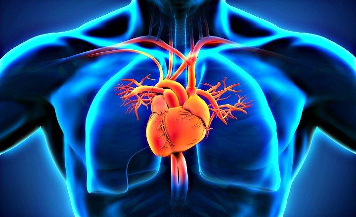 Cáncer de Corazón corazón