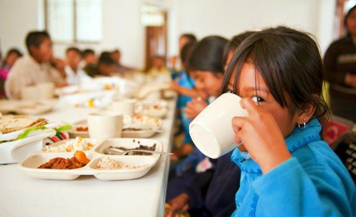 Seguridad Alimentaria alimentos